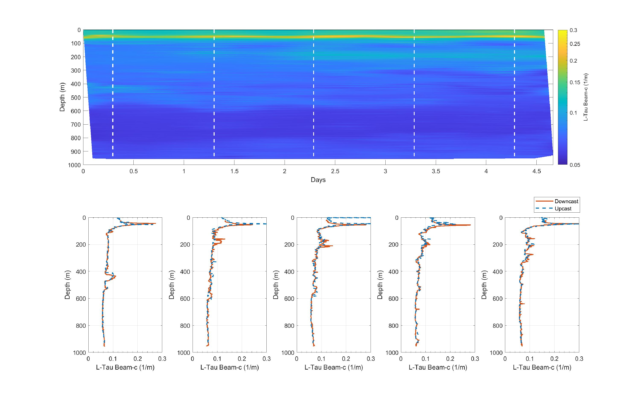 LISST-Tau profiles from 4.5 day glider deployment. More than 20 profiles were collected. Five are shown in details (dashed lines).